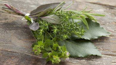 Photo of Bouquet Garni.