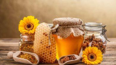 Photo of Pierzga pszczela czy pyłek pszczeli??? A może jedno i drugie ;-)