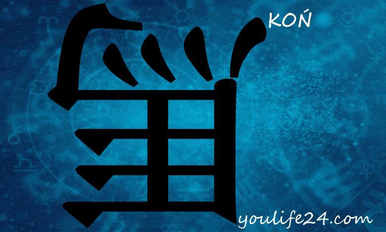 Koń - horoskop chiński