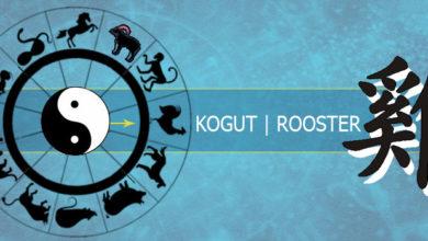 Photo of Kogut – przeznaczenie według miesiąca urodzenia