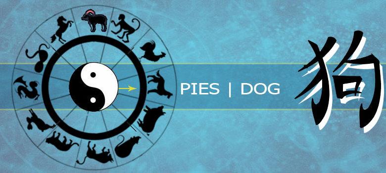 Pies - horoskop chiński