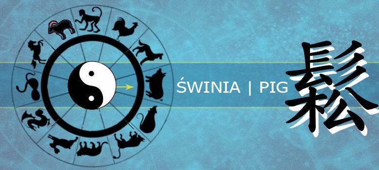 Świnia - horoskop chiński