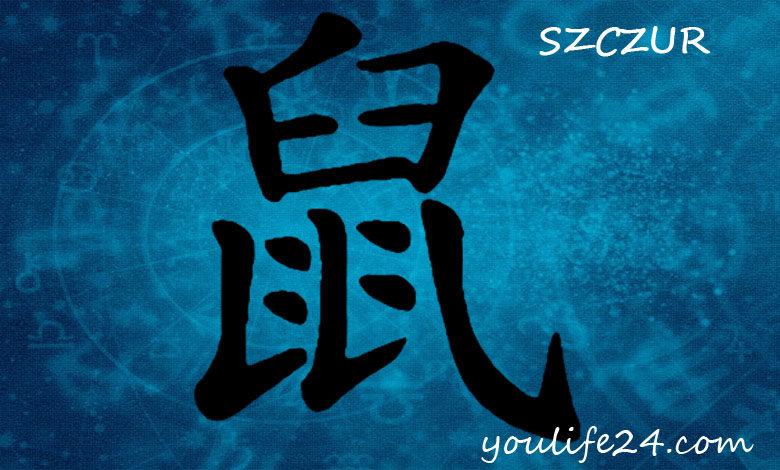 Szczur - horoskop chiński
