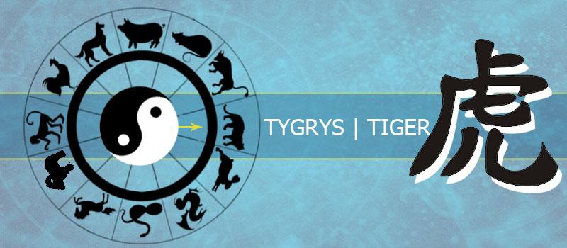 Tygrys - horoskop chiński