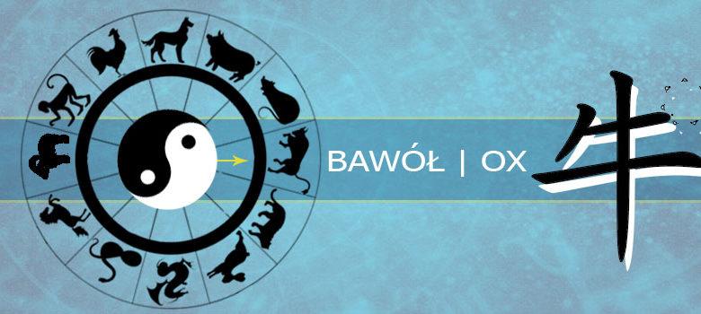 Bawół - chiński zodiak
