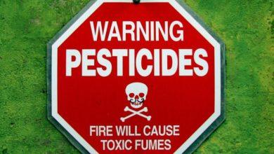 Photo of Pestycydy