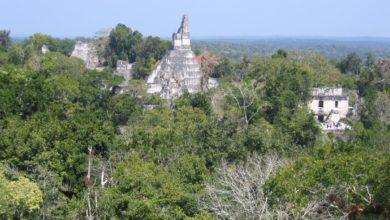 Photo of Majowie – wysoko rozwinięta cywilizacja