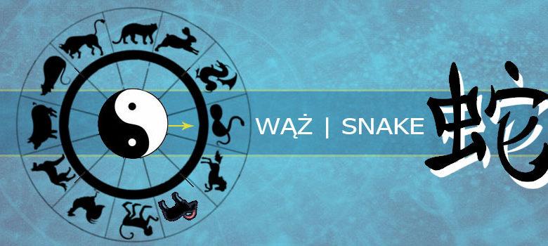 Wąż - horoskop chiński