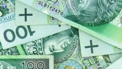 sennik banknoty